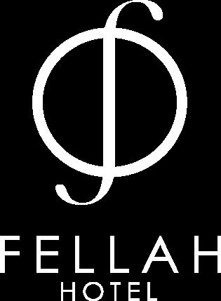 logo_solo